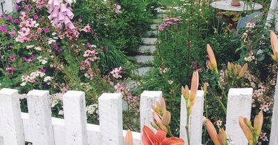 Wieso Gärtnern der neue Sommertrend ist