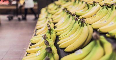 Gesunde Ernährung mit kleinem Budget