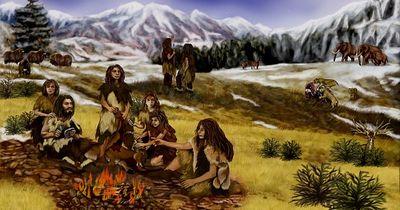Zurück in die Steinzeit - Essen wie die Jäger und Sammler