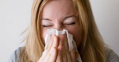Die besten Tipps gegen Erkältung