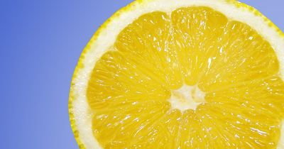 Dieses Wundermittel Stärkt euer Immunsystem