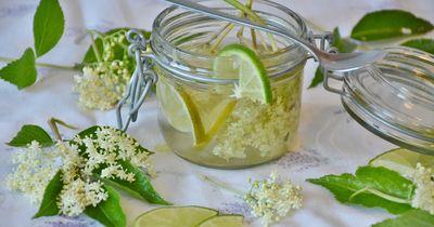 Die besten Limo-Rezepte für den Sommer