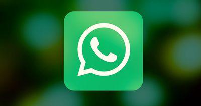 Wenn du das bei WhatsApp machst, halten dich alle für eine Lügnerin
