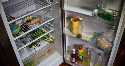 So reinigst du den Kühlschrank richtig!