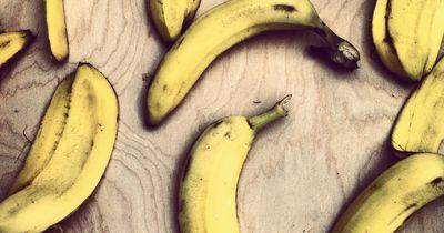 So glitschig sind Bananenschalen