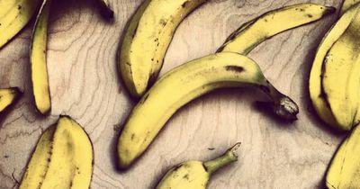 So kannst du altes Obst genial wiederverwenden