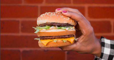 Darum schimmeln Hamburger nicht