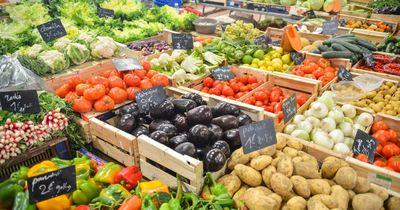 Der extreme Konkurrenzkampf der Biomärkte