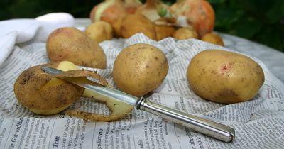 Das beste Rezept für die leckersten Ofen-Kartoffeln