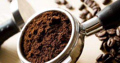 4 gute Gründe, warum wir den Kaffeesatz nicht wegschmeißen sollten