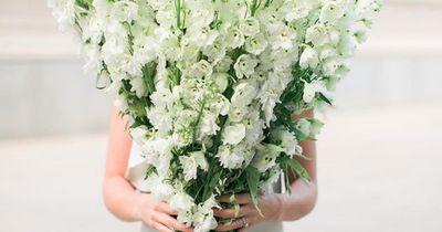 Bye bye Sternzeichen: Das verrät deine Geburtsblume über dich!