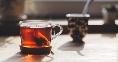 Dieser Tee kann die Wirkung deiner Pille aufheben