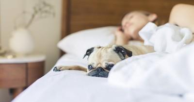 Was verrät deine Schlafposition über dich?