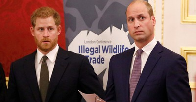 Prinz William und Harry haben eine Schwester, die keiner kennt