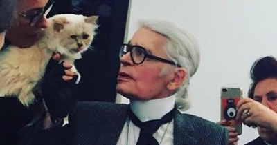 Nach Karl Lagerfelds Tod: Was wird jetzt aus Kätzchen Choupette?