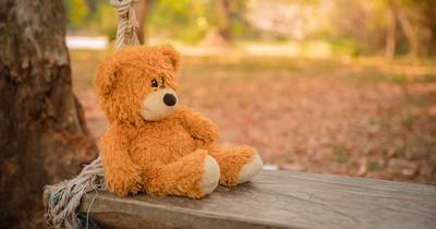 Autistischer Junge verliert seinen Teddy zuhause und ruft deshalb die Polizei - die reagiert perfekt