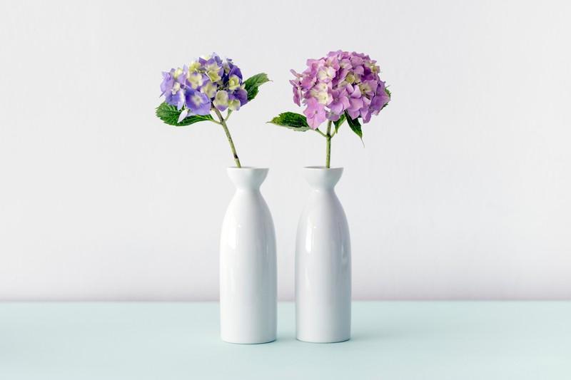 Man sieht eine Vase, die durch Eierschalen gereinigt werden kann