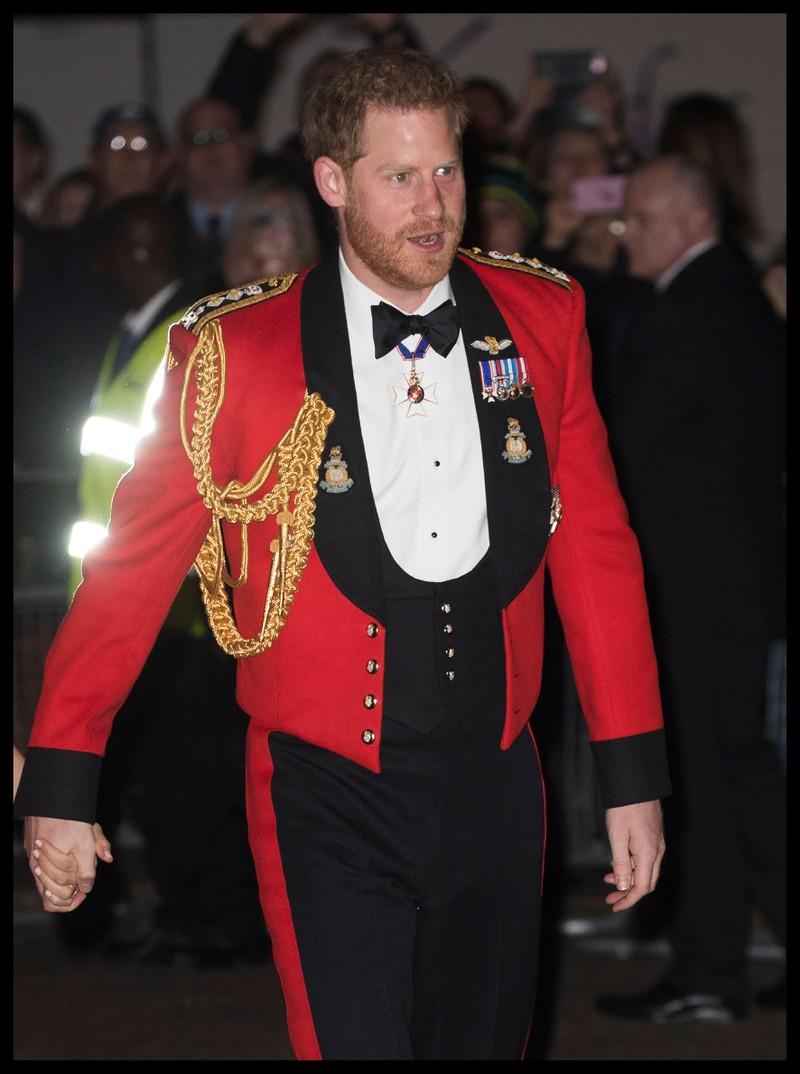 So kennen wir Prinz Harry: ausgelassen und lustig.