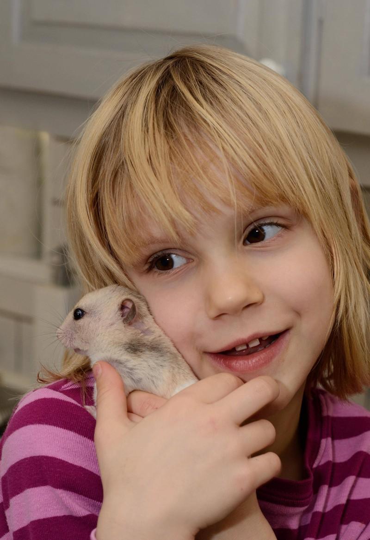 Der Hamster wird von dem Mädchen bemitleidet, die Eltern unternehmen jedoch nichts.